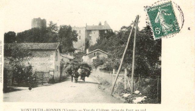 Montreuil Bonnin - vue du chateau - GE86 - Thierry Peronnet